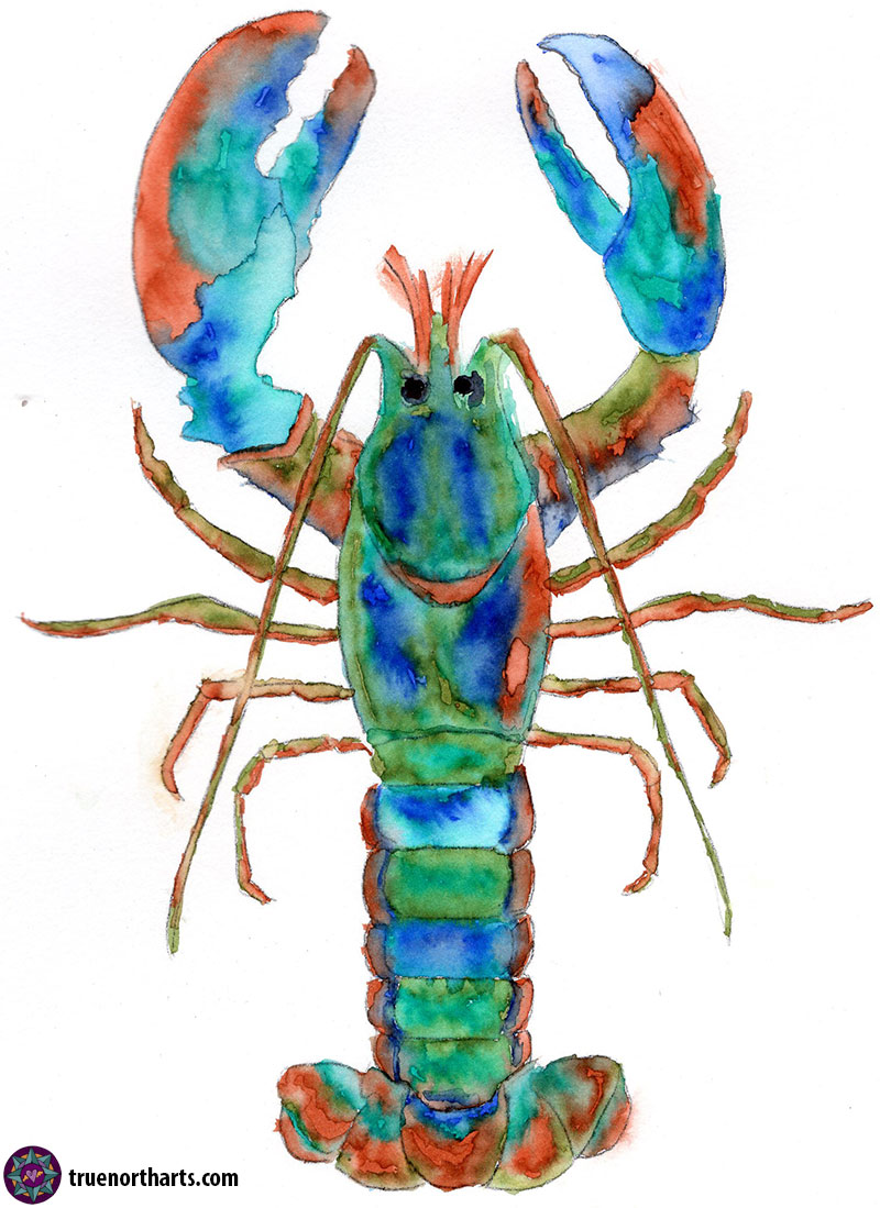 lobster-watercolor800