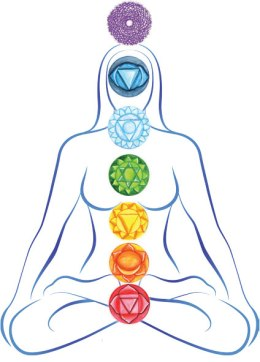 Chakras are energy centers in the body where energy is stored, regulated, and distributed. There are seven main chakras that run along the spine and each chakra has a specific tone and quality that impacts our mental, emotional, physical, and spiritual well-being.